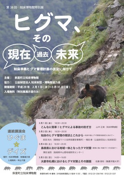 2016kuma_poster.jpg